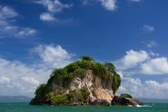 Île d'oiseaux, stationnement national de visibilité directe Haitises Photos stock
