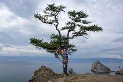 Île d'Olkhon Photos stock