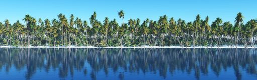Île dans l'océan, île tropicale Photo stock
