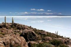 Île de cactus, Salar de Uyuni Images libres de droits