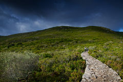 Île de Capraia, parc national d'Arcipelago Toscano, Toscane, Italie Photos stock