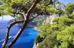 Île de Capri - Campanie, Italie Photo libre de droits