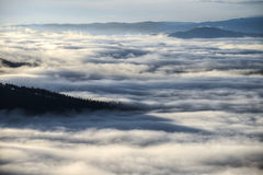 Île de forêt en mer de brume Photographie stock libre de droits