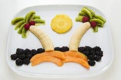 Île de fruit frais Photo libre de droits