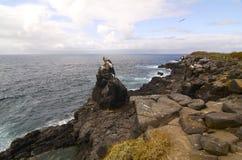 Île de Galapagos - bel Isla Santa Fé Photos stock