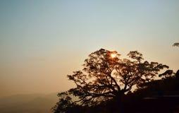 Île de Hainan Images libres de droits