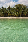 Île de Havelock Image libre de droits