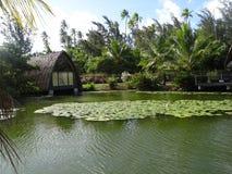 Île de Huahine Photo stock