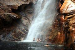 Île de kangourou, Australie Photographie stock