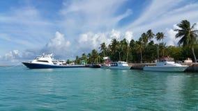 Île de Kudahuvadhoo avec les palmtrees et la lagune claire Photos stock