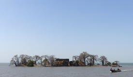 Île de Kunta Kinteh Image stock