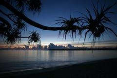 ÎLE DE L'ASIE TIMOR ORIENTAL TIMOR LESTE JACO Images libres de droits
