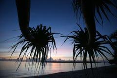 ÎLE DE L'ASIE TIMOR ORIENTAL TIMOR LESTE JACO Image libre de droits