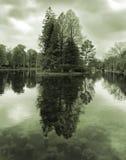 Île de lac avec des arbres Image libre de droits