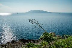 Île de Levanzo Egadi Photographie stock