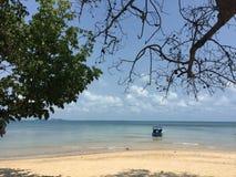 Île de Lipe Images libres de droits