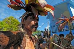 Île de Luzon photo libre de droits