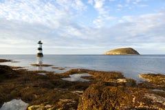 Île de macareux et phare de point de Penmon image libre de droits