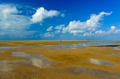 Île de Magaruque - Mozambique Images stock