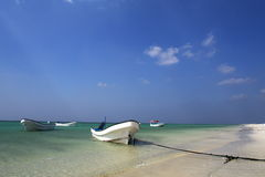 Île de Masirah Photo stock