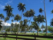 Île de Moorea Photos stock