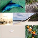 Île de Moreton images libres de droits