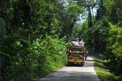 Île de Palawan Photographie stock libre de droits