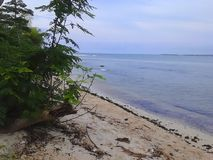 Île de Panjang Photographie stock libre de droits