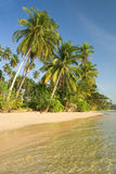 Île de paradis Photo libre de droits