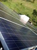 Île de Pelee solaire Images libres de droits