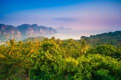 Île de Phi-Phi Photo stock