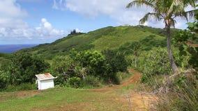Île de Pitcairn de la colline banque de vidéos