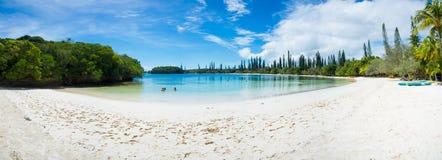 Île de plage de pins Photographie stock libre de droits