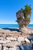 Île de pot de fleurs sur le lac Huron Images stock
