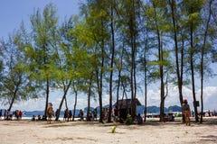 Île de pp en Thaïlande images libres de droits