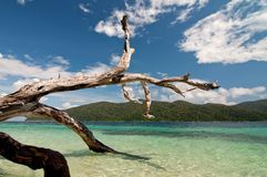 Île de Ravi Image libre de droits