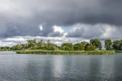 Île de Reed en rivière de Vecht photos stock