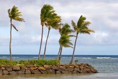 Île de roche Image libre de droits