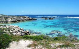 Île de Rottnest Photos stock