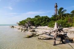 Île de Sanibel photo libre de droits
