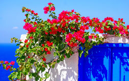 Île de Santorini, Grèce Photos stock