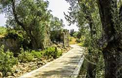 Île de Sedir Photo libre de droits