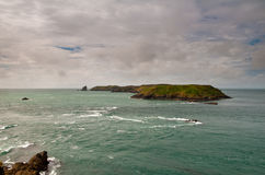 Île de Skomer Photographie stock libre de droits