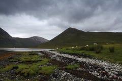 Île de Skye, Ecosse images libres de droits
