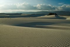 Île de Socotra 365 Images stock