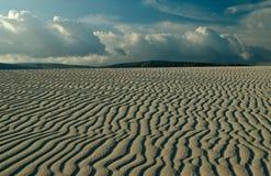 Île de Socotra 367 Images stock