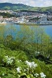 Île de Terceira, Açores, Portugal Image libre de droits