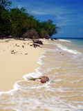 Île de tortue. Mer de Sulu Photos libres de droits