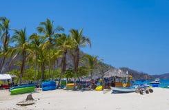 Île de Tortuga, Costa Rica photos libres de droits