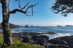 Île de Vancouver occidentale de Côte Pacifique AVANT JÉSUS CHRIST Canada images stock